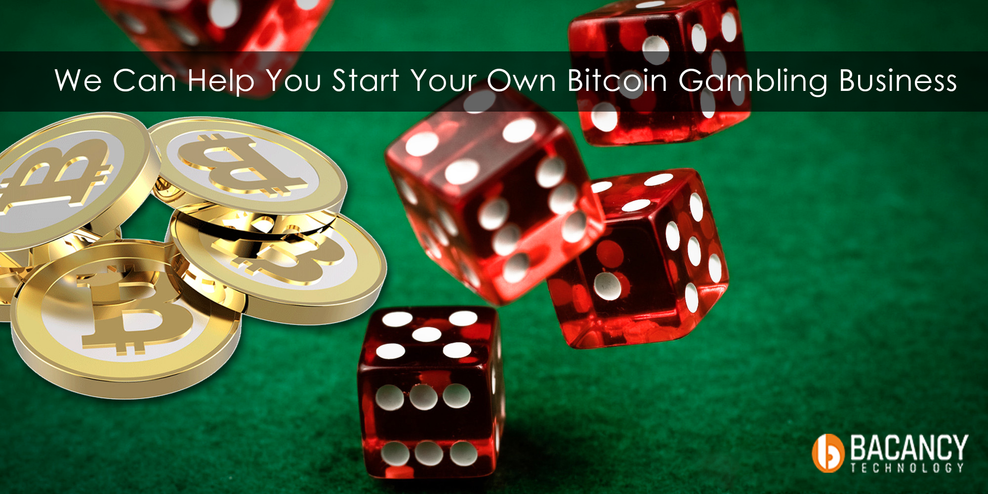 White Label Casino Software Solution For Your Own Online Gambling Business