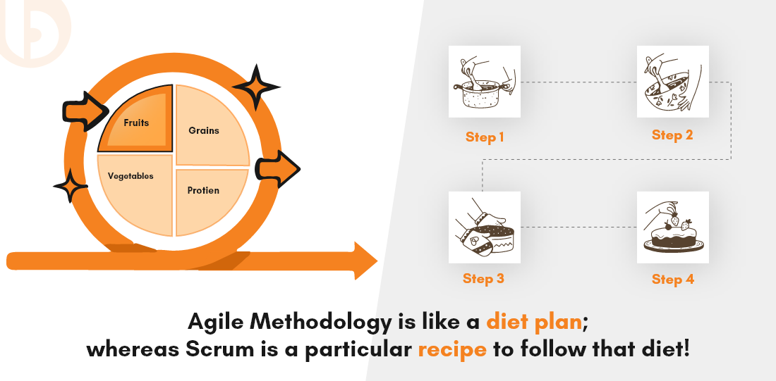 agile and scrum diet plan