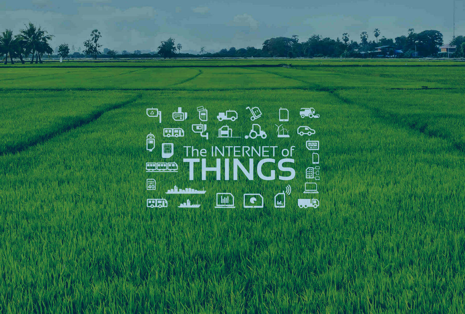 Iot Solutions For Farmers