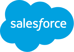 Empower Your Business with Intellectual Salesforce Customization Services
